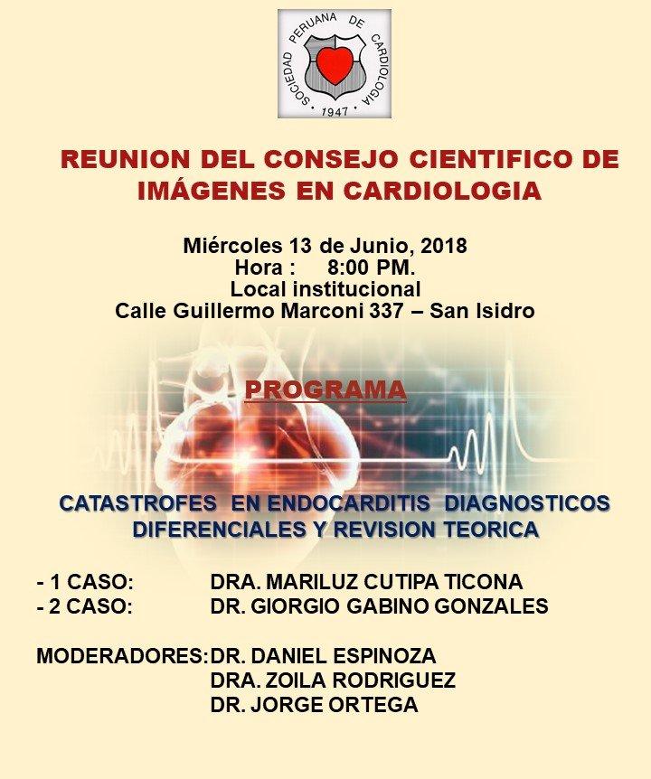 Reunión del Consejo Científico de imágenes en cardiología